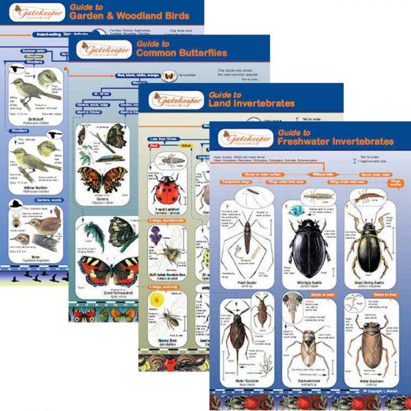 Animals Identification Guides