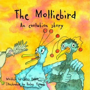 Molliebird Front Cover 1024x1024@2x